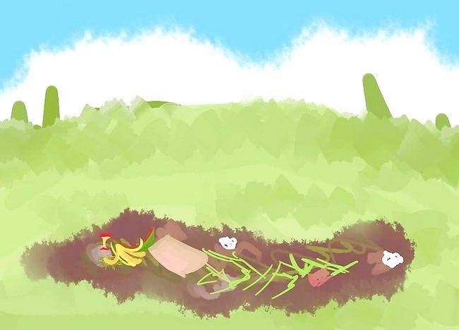 Imagine cu titlul Adăugați potasiu într-o grădină organică Pasul 1