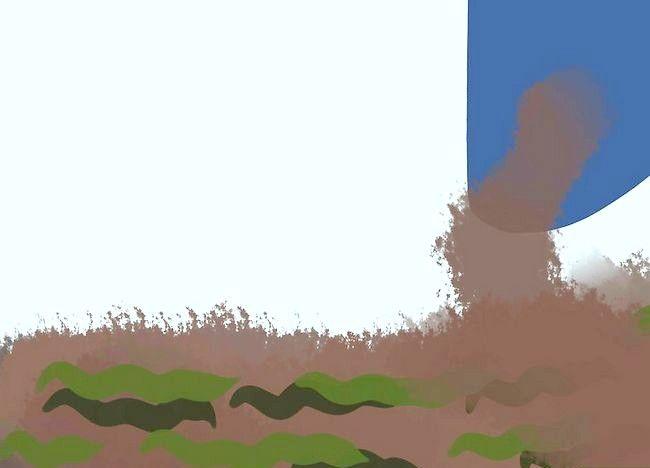 Imagine cu titlul Adăugați potasiu într-o grădină organică Pasul 4