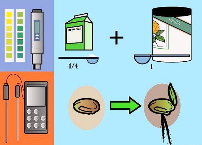 Imaginea intitulată Plante de alimentare într-un sistem de hidroponie Utilizând Maxsea Pasul 1