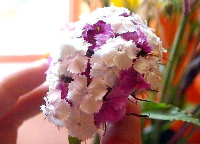 Imaginea intitulă Aranjați un buchet de flori Pasul 8