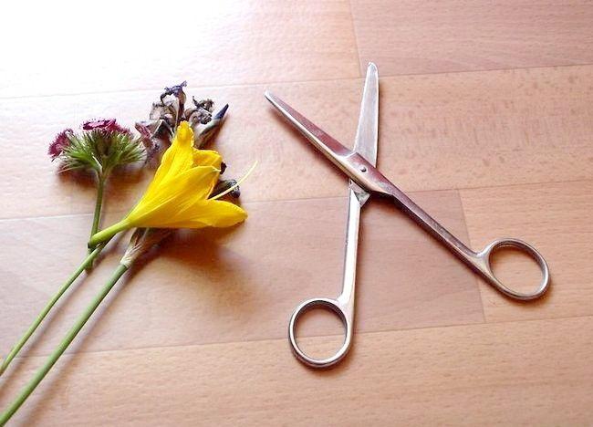 Imagine intitulată Aranjați un buchet de flori Step 5Bullet1