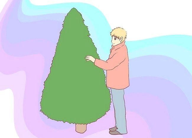 Imagine intitulată Sărbătoriți Crăciunul Pasul 4