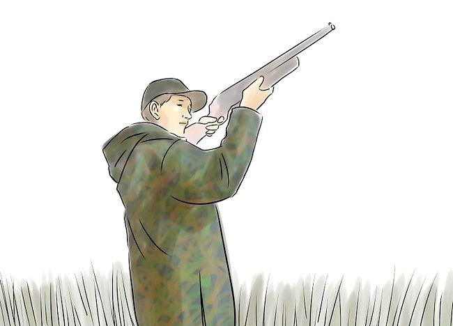 Cum să începi Ducii de vânătoare