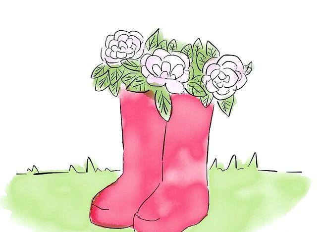 Imagine intitulată Creați o grădină de vile Step 9Bullet1