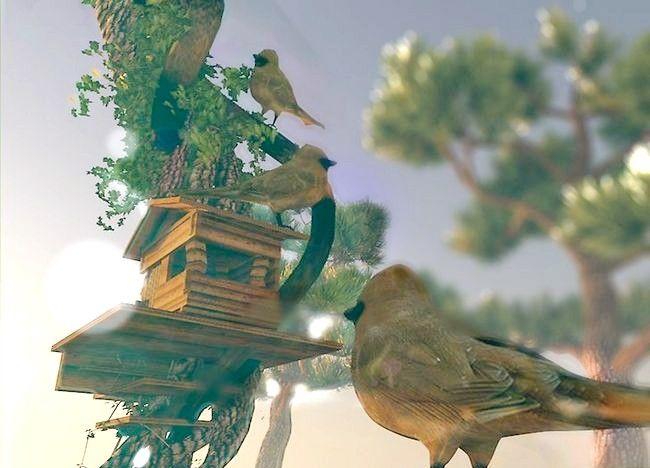 Imagine cu titlul Creați o grădină de basm Pasul 3