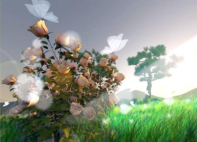 Imaginea intitulată Creați o grădină de zână Pasul 4