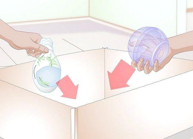 Imagine cu titlul Faceți un loc de joacă pentru hamsteri Pasul 7