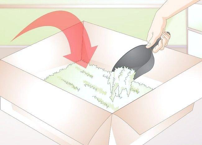 Imaginea intitulă Faceți un loc de joacă pentru hamsteri Pasul 9