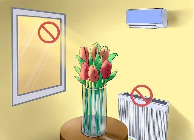 Imaginea intitulată Îngrijire pentru lalele proaspete tăiate Pasul 11