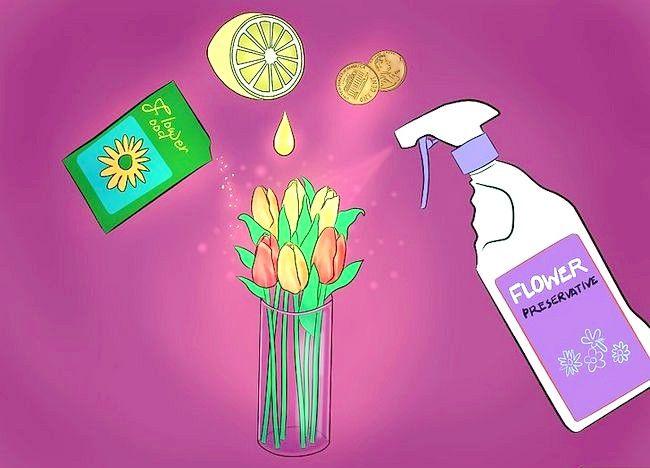 Imaginea intitulată Îngrijire pentru lalele tăiate proaspăt Pasul 10
