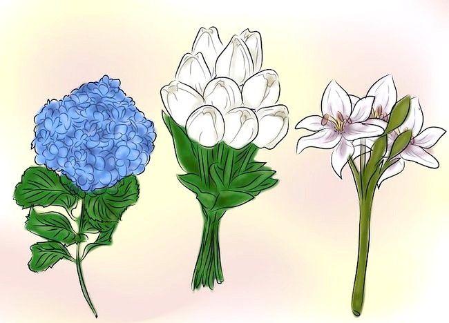 Imagine intitulată Dați flori Pasul 1