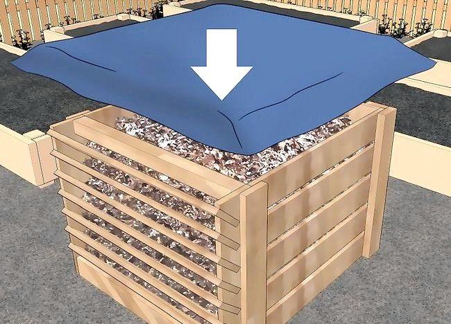 Imagine intitulată Frunze de compost Pasul 11