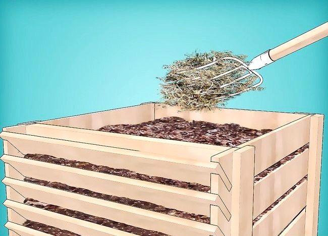 Imagine intitulată Frunze de compost Pasul 13