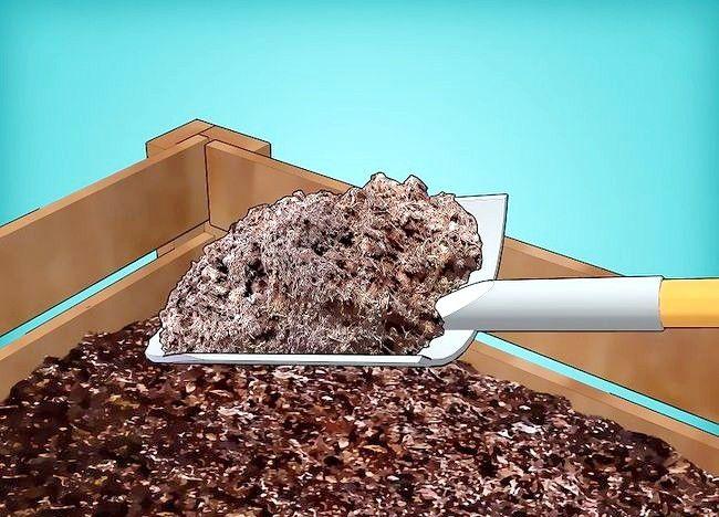 Imagine intitulată Frunze de compost Pasul 14
