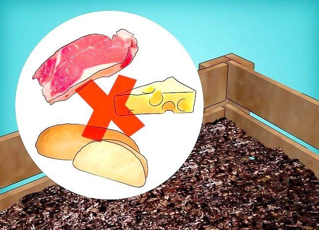 Imagine intitulată Frunze de compost Pasul 15