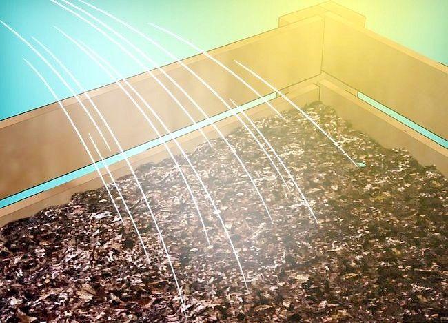 Imaginea intitulată Frunze de compost Pasul 17