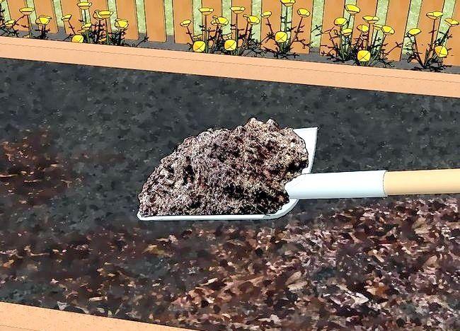 Imagine intitulată Compost Frunze Pasul 22
