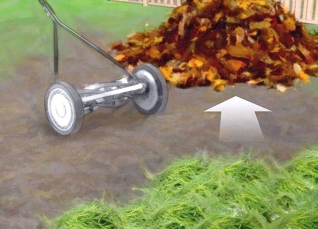 Imagine intitulată Frunze de compost Pas 5