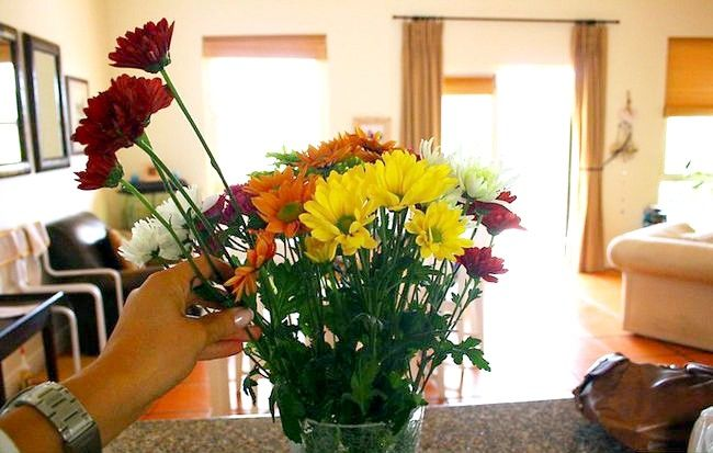 Imaginea intitulată Plasați florile în vază Pasul 5