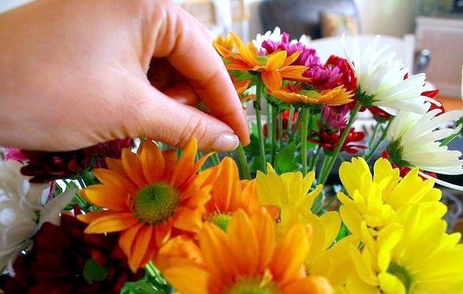 Imagine intitulată Eliminați polenul Pasul 6
