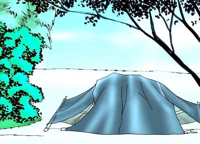 Imagine intitulată Compost în vreme rece. Pasul 9