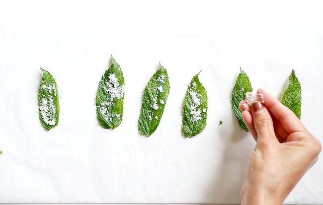 Imaginea intitulată Fă-ți frunzele de menta cu mirodenii Pasul 3