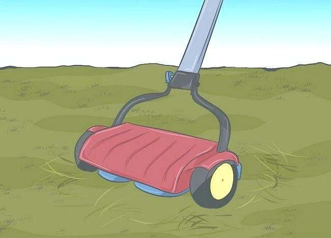 Imaginea intitulată Frunze de mulci cu mașina de tuns iarba Pasul 1