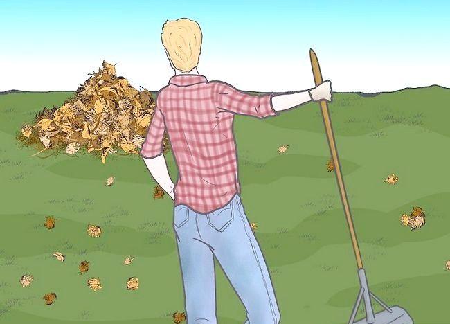 Imaginea intitulată Frunze de mulci cu mașina de tuns iarba Pasul 7