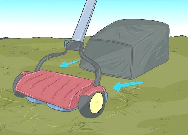 Imaginea intitulată Frunze de mulci cu mașina de tuns iarba Pasul 1Bullet2