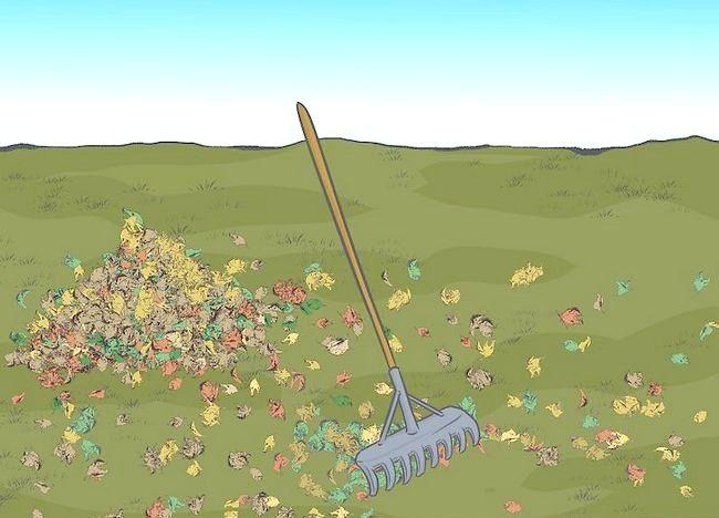 Imaginea intitulată Frunze de mulci cu mașină de tuns iarba Step 2Bullet1