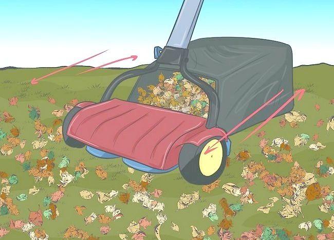 Imaginea intitulată Frunze de mulci cu mașina de tuns iarba Pasul 3
