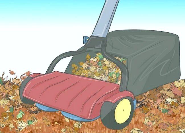 Imaginea intitulată Frunze de mulci cu mașina de tuns iarba Step 4Bullet1