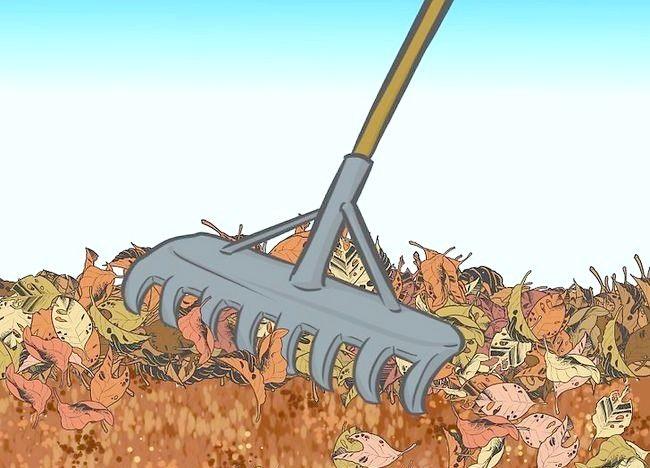 Imaginea intitulată Frunze de mulci cu mașina de tuns iarba Step 4Bullet2