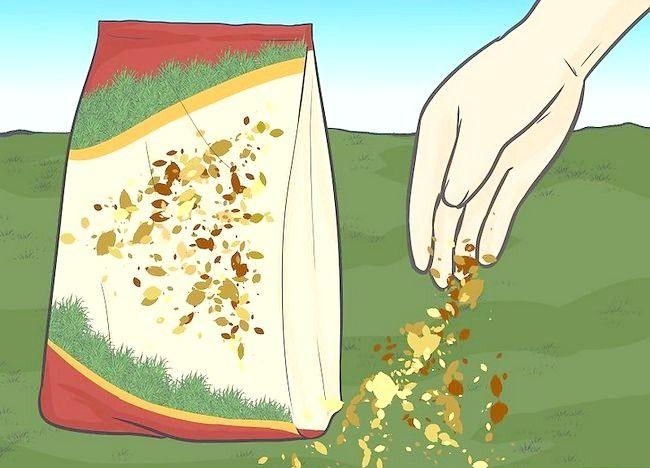 Imaginea intitulată Frunze de mulci cu mașina de tuns iarba Pasul 5