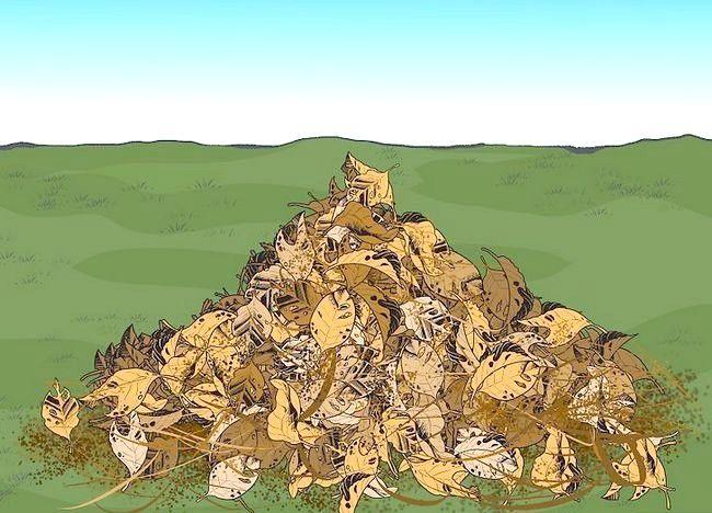 Imaginea intitulată Frunze de mulci cu mașina de tuns iarba Pasul 6