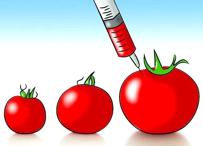 Imaginea intitulată Începeți în mișcarea Slow Food Pasul 5