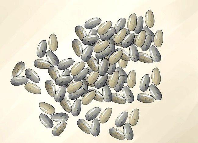 Imaginea intitulată Folosiți Chia Seeds Pasul 15