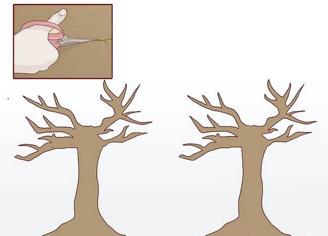 Cum sa faci un copac de hârtie pentru copii