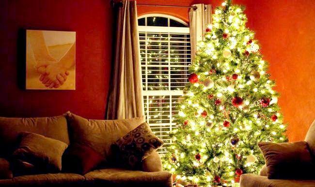 Poza cu titlul Christmas Tree 2010
