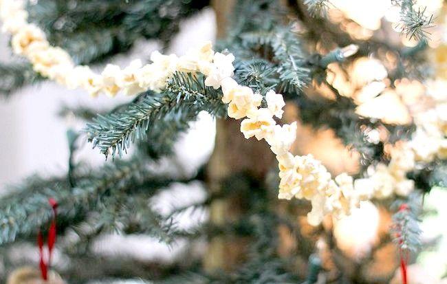 Poza intitulată Popcorn cu coarde pe un pom de Crăciun Pasul 4