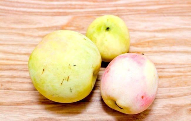 Imagine intitulată Ferment Apple Juice Pasul 1