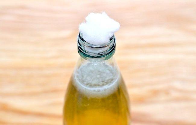 Imagine intitulată Ferment Apple Juice Pasul 6