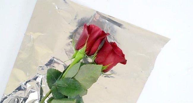 Imaginea intitulată Păstrați trandafirii proaspeți Pasul 1