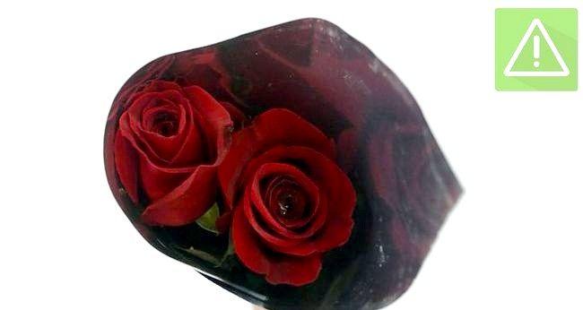 Imaginea intitulată Păstrați trandafirii Fresh Pasul 2