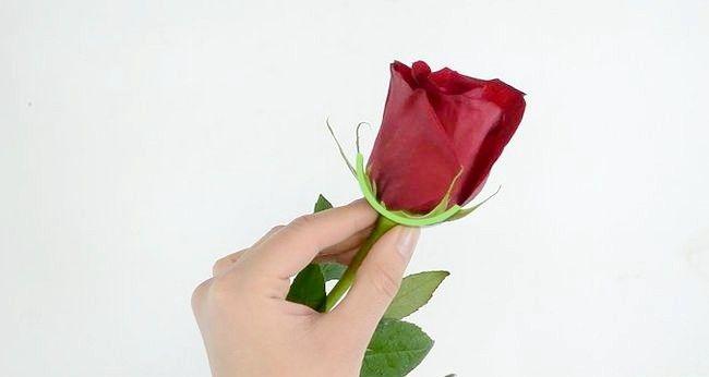 Imaginea intitulată Păstrați trandafirii proaspeți Pasul 3