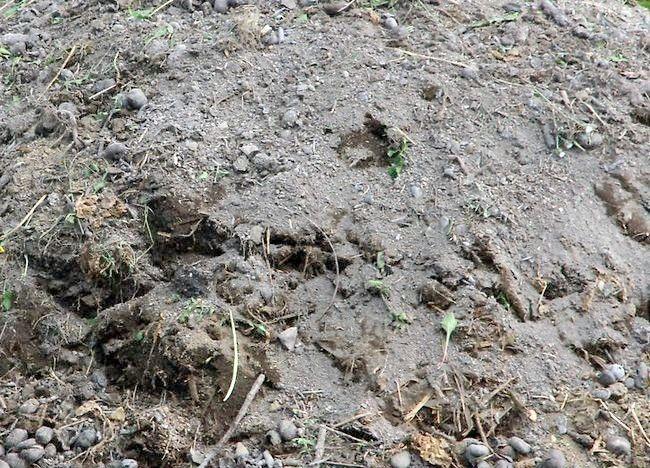 Imagine intitulată Menținerea unui pasaj compost Pasul 2