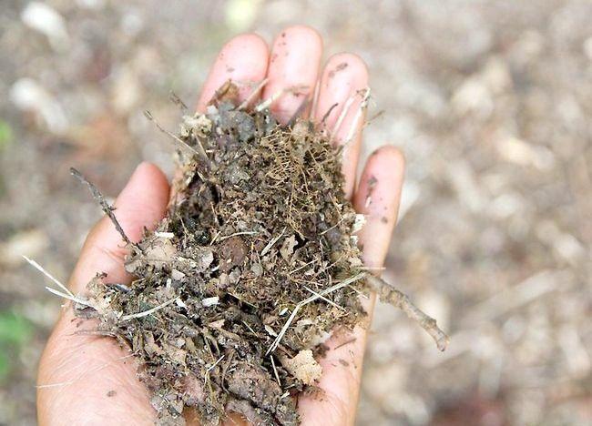 Imagine intitulată Menținerea unui pasaj al compostului Pasul 6