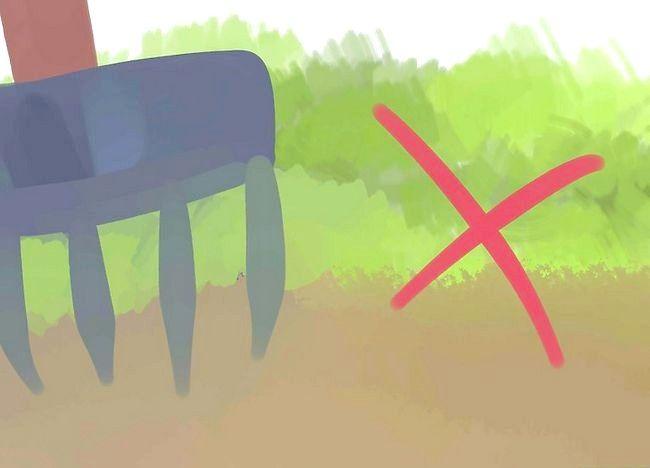 Imaginea intitulată Scurgeri de sol slab pentru soluri Pasul 3