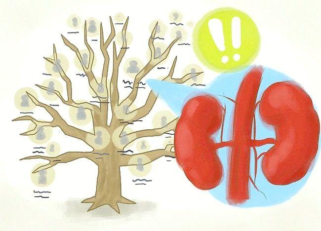 Imaginea intitulată Îmbunătățirea funcției renale Pasul 12