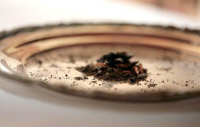 Imaginea intitulată Folosiți frunzele verzi de ceai verde Pas 13